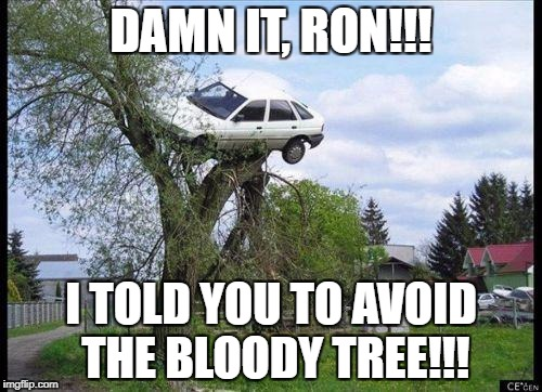 car in tree | DAMN IT, RON!!! I TOLD YOU TO AVOID THE BLOODY TREE!!! | image tagged in car in tree | made w/ Imgflip meme maker