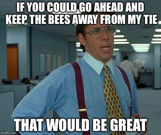 That Would Be Great Meme | IF YOU COULD GO AHEAD AND KEEP THE BEES AWAY FROM MY TIE THAT WOULD BE GREAT | image tagged in memes,that would be great | made w/ Imgflip meme maker