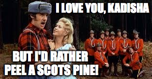 I LOVE YOU, KADISHA BUT I'D RATHER PEEL A SCOTS PINE! | made w/ Imgflip meme maker