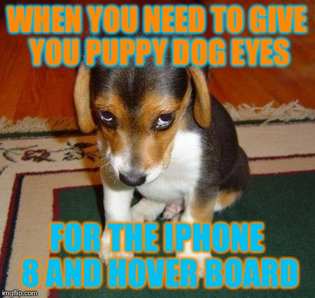 Sad Puppy Imgflip