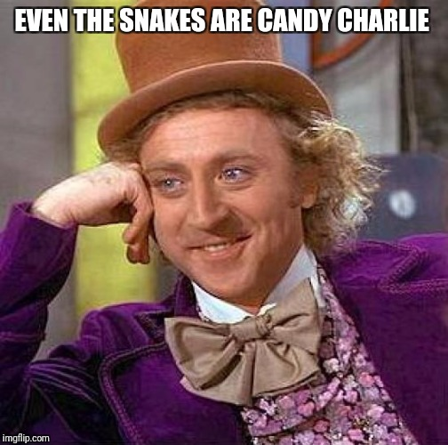 Creepy Condescending Wonka Meme | EVEN THE SNAKES ARE CANDY CHARLIE | image tagged in memes,creepy condescending wonka | made w/ Imgflip meme maker