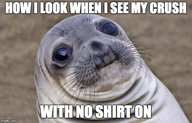 Awkward Moment Sealion Meme | HOW I LOOK WHEN I SEE MY CRUSH WITH NO SHIRT ON | image tagged in memes,awkward moment sealion | made w/ Imgflip meme maker