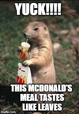 THIS MCDONALD'S MEAL TASTES LIKE LEAVES YUCK!!!! | made w/ Imgflip meme maker