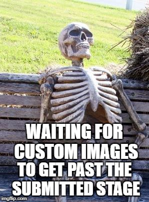 Even then, there's only a .01% chance people will see it, because it takes so long to get it through. | WAITING FOR CUSTOM IMAGES TO GET PAST THE SUBMITTED STAGE | image tagged in memes,waiting skeleton | made w/ Imgflip meme maker
