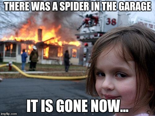 Disaster Girl Meme | THERE WAS A SPIDER IN THE GARAGE IT IS GONE NOW... | image tagged in memes,disaster girl | made w/ Imgflip meme maker