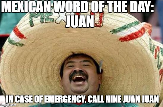 The only Juan like it | MEXICAN WORD OF THE DAY: IN CASE OF EMERGENCY, CALL NINE JUAN JUAN JUAN | image tagged in mexican word of the day,memes,funny,mexico,juan | made w/ Imgflip meme maker