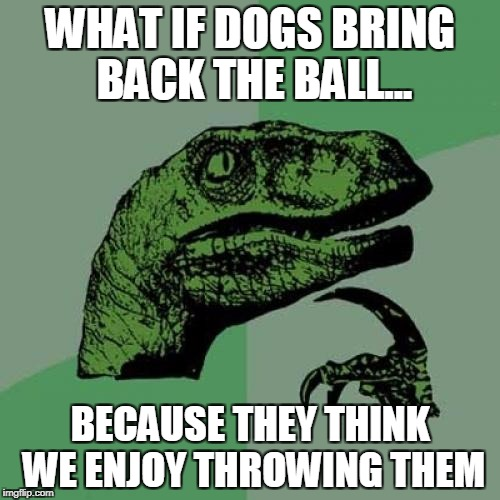 Philosoraptor Meme | WHAT IF DOGS BRING BACK THE BALL... BECAUSE THEY THINK WE ENJOY THROWING THEM | image tagged in memes,philosoraptor,dogs | made w/ Imgflip meme maker