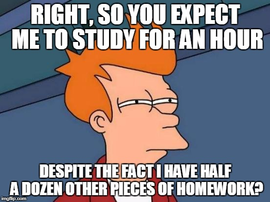 Seriously Though... | RIGHT, SO YOU EXPECT ME TO STUDY FOR AN HOUR DESPITE THE FACT I HAVE HALF A DOZEN OTHER PIECES OF HOMEWORK? | image tagged in memes,futurama fry,funny,school,teacher,stupid people | made w/ Imgflip meme maker