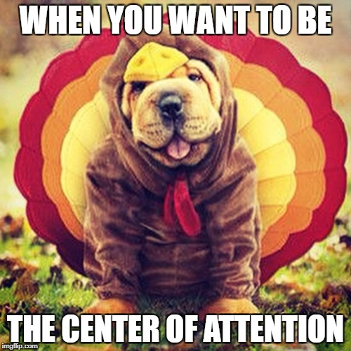 WHEN YOU WANT TO BE THE CENTER OF ATTENTION | image tagged in happy thanksgiving | made w/ Imgflip meme maker