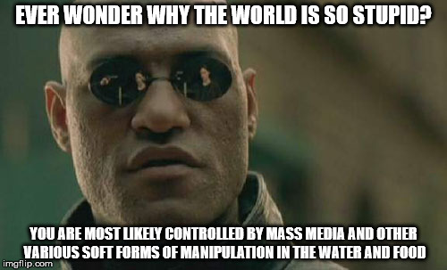 Matrix Morpheus Meme | EVER WONDER WHY THE WORLD IS SO STUPID? YOU ARE MOST LIKELY CONTROLLED BY MASS MEDIA AND OTHER VARIOUS SOFT FORMS OF MANIPULATION IN THE WAT | image tagged in memes,matrix morpheus | made w/ Imgflip meme maker