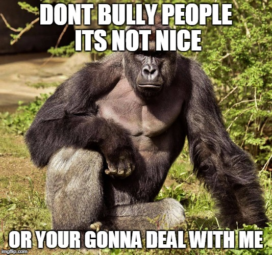 DONT BULLY PEOPLE ITS NOT NICE OR YOUR GONNA DEAL WITH ME | image tagged in harambe | made w/ Imgflip meme maker