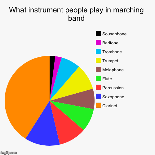 What instrument people play in marching band | Clarinet , Saxophone , Percussion, Flute, Melaphone, Trumpet, Trombone, Baritone, Sousaphone | image tagged in funny,pie charts | made w/ Imgflip pie chart maker