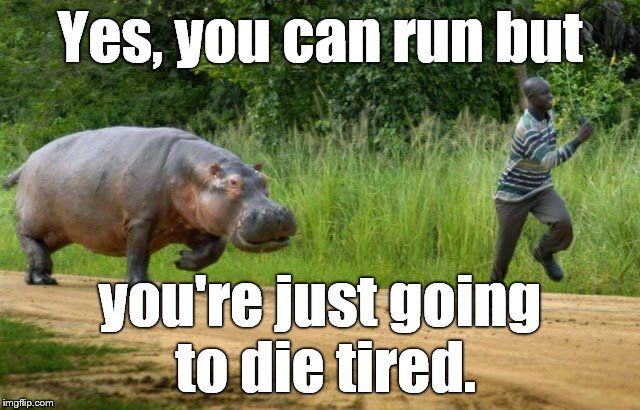 Yes, you can run but you're just going to die tired. | made w/ Imgflip meme maker