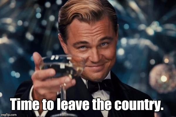 Leonardo Dicaprio Cheers Meme | Time to leave the country. | image tagged in memes,leonardo dicaprio cheers | made w/ Imgflip meme maker