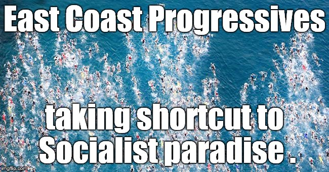 Swimmers in flight | East Coast Progressives taking shortcut to Socialist paradise . | image tagged in swimmers in flight | made w/ Imgflip meme maker