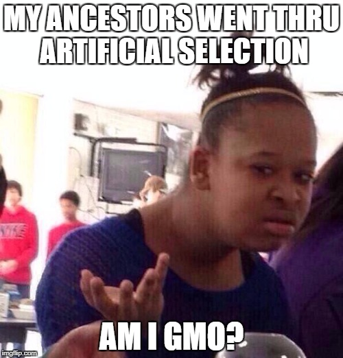 Black Girl Wat Meme | MY ANCESTORS WENT THRU ARTIFICIAL SELECTION AM I GMO? | image tagged in memes,black girl wat,gmo,science,evolution,race | made w/ Imgflip meme maker