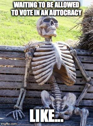 Waiting Skeleton Meme | WAITING TO BE ALLOWED TO VOTE IN AN AUTOCRACY LIKE... | image tagged in memes,waiting skeleton | made w/ Imgflip meme maker