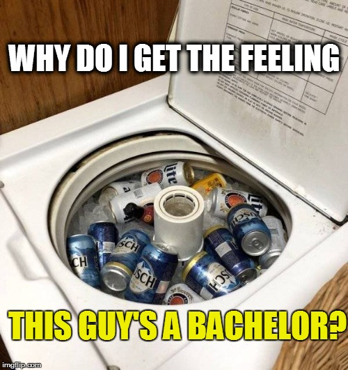 'MERICA! | WHY DO I GET THE FEELING THIS GUY'S A BACHELOR? | image tagged in funny | made w/ Imgflip meme maker