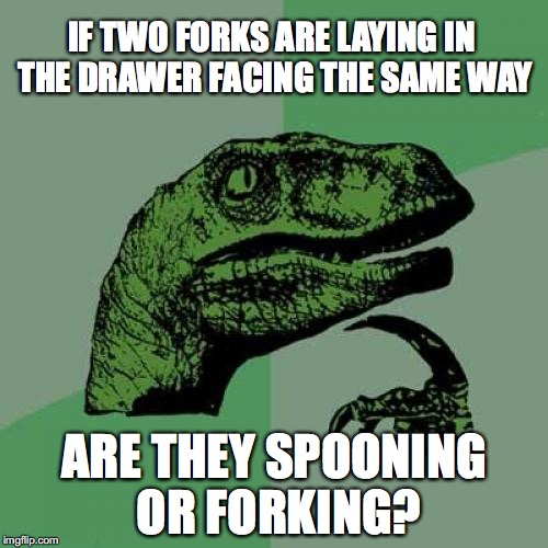 Philosoraptor Meme | IF TWO FORKS ARE LAYING IN THE DRAWER FACING THE SAME WAY ARE THEY SPOONING OR FORKING? | image tagged in memes,philosoraptor | made w/ Imgflip meme maker