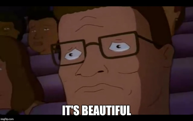 IT'S BEAUTIFUL | image tagged in funny,hank hill | made w/ Imgflip meme maker