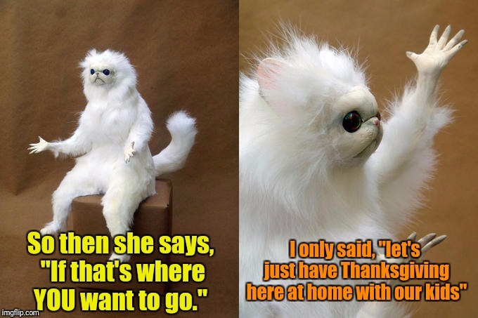 "Persian Cat Room Guardian | So then she says, ""If that's where YOU want to go."" I only said, ""let's just have Thanksgiving here at home with our kids"" 