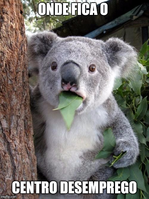 Surprised Koala Meme | ONDE FICA O CENTRO DESEMPREGO | image tagged in memes,surprised koala | made w/ Imgflip meme maker