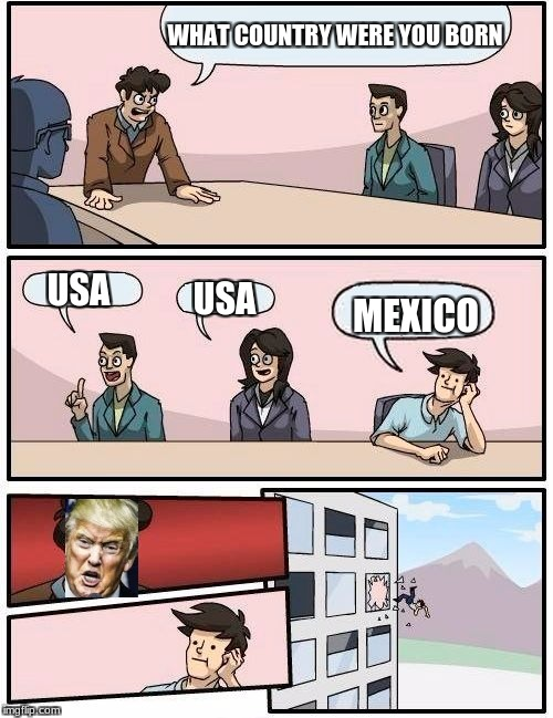 Boardroom Meeting Suggestion Meme | WHAT COUNTRY WERE YOU BORN USA USA MEXICO | image tagged in memes,boardroom meeting suggestion | made w/ Imgflip meme maker