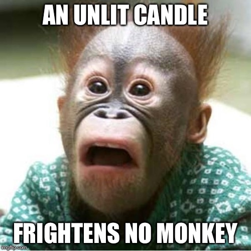 AN UNLIT CANDLE FRIGHTENS NO MONKEY | image tagged in scared monkey | made w/ Imgflip meme maker