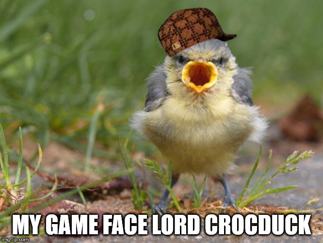 MY GAME FACE LORD CROCDUCK | made w/ Imgflip meme maker