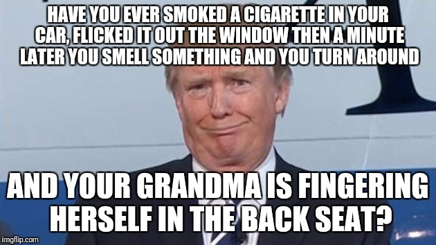 Trump Face |  HAVE YOU EVER SMOKED A CIGARETTE IN YOUR CAR, FLICKED IT OUT THE WINDOW THEN A MINUTE LATER YOU SMELL SOMETHING AND YOU TURN AROUND; AND YOUR GRANDMA IS FINGERING HERSELF IN THE BACK SEAT? | image tagged in trump face | made w/ Imgflip meme maker