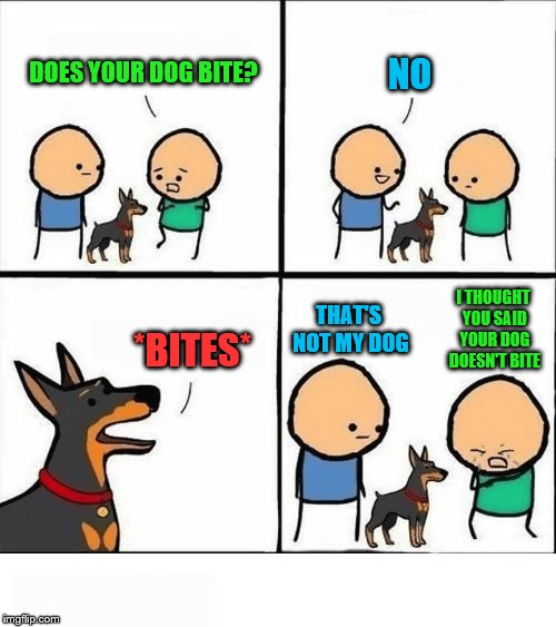 in the fourth box, read the green first, then the blue | DOES YOUR DOG BITE? NO *BITES* I THOUGHT YOU SAID YOUR DOG DOESN'T BITE THAT'S NOT MY DOG | image tagged in does your dog bite,dog | made w/ Imgflip meme maker