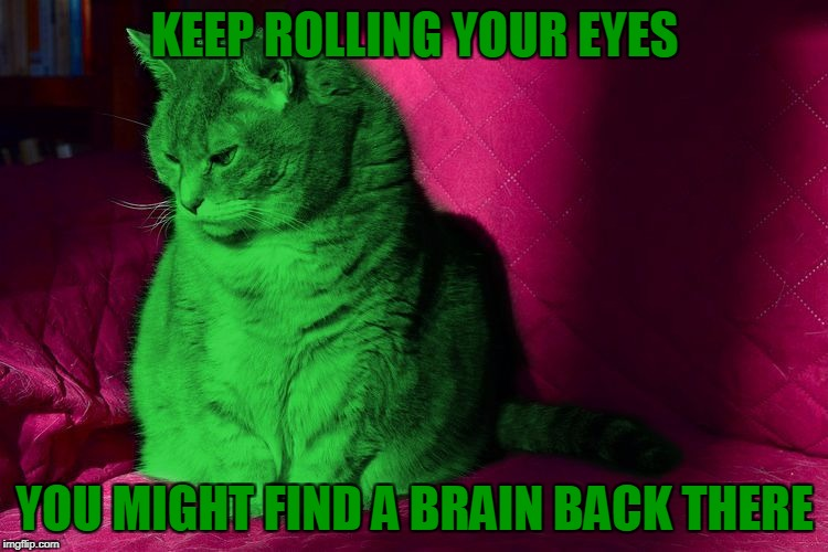 Cantankerous RayCat | KEEP ROLLING YOUR EYES YOU MIGHT FIND A BRAIN BACK THERE | image tagged in cantankerous raycat,memes | made w/ Imgflip meme maker