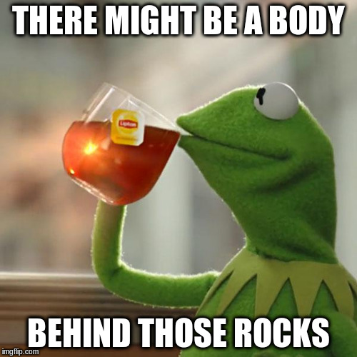 But Thats None Of My Business Meme | THERE MIGHT BE A BODY BEHIND THOSE ROCKS | image tagged in memes,but thats none of my business,kermit the frog | made w/ Imgflip meme maker