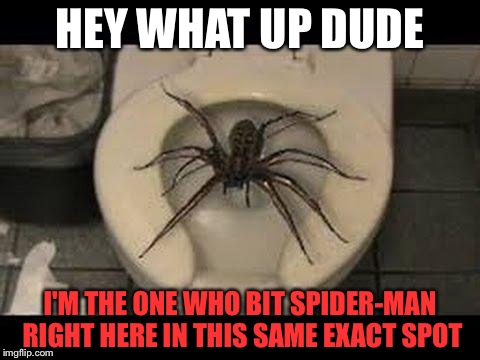Superhero Week: Spider-Man's True Origin | HEY WHAT UP DUDE I'M THE ONE WHO BIT SPIDER-MAN RIGHT HERE IN THIS SAME EXACT SPOT | image tagged in spider toilet,memes | made w/ Imgflip meme maker