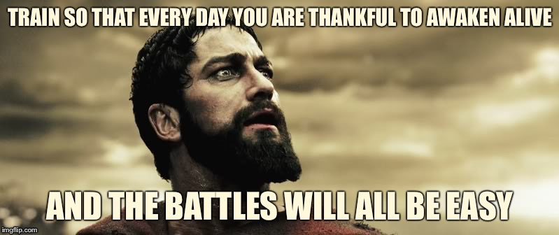 TRAIN SO THAT EVERY DAY YOU ARE THANKFUL TO AWAKEN ALIVE AND THE BATTLES WILL ALL BE EASY | image tagged in leonidas cry,memes,war | made w/ Imgflip meme maker