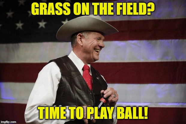 GRASS ON THE FIELD? TIME TO PLAY BALL! | image tagged in roymooresmurica | made w/ Imgflip meme maker