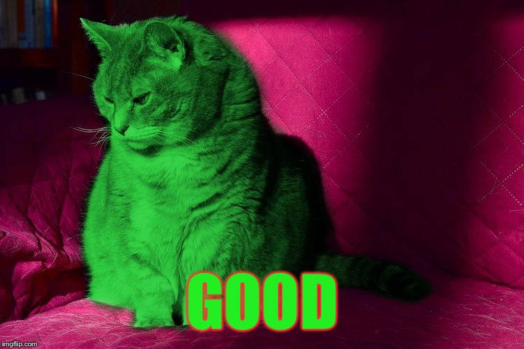 Cantankerous RayCat | GOOD | image tagged in cantankerous raycat | made w/ Imgflip meme maker