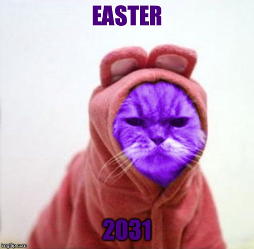 Sullen RayCat | EASTER 2031 | image tagged in sullen raycat | made w/ Imgflip meme maker