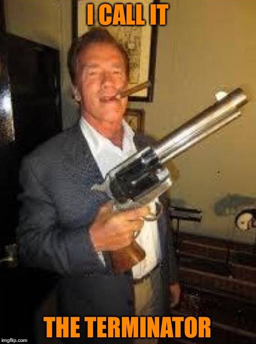 Arnold gun control | I CALL IT THE TERMINATOR | image tagged in arnold gun control | made w/ Imgflip meme maker
