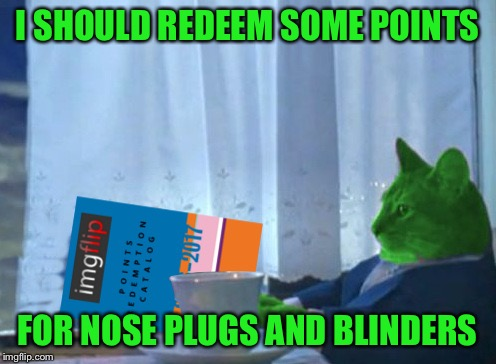RayCat redeeming points | I SHOULD REDEEM SOME POINTS FOR NOSE PLUGS AND BLINDERS | image tagged in raycat redeeming points | made w/ Imgflip meme maker