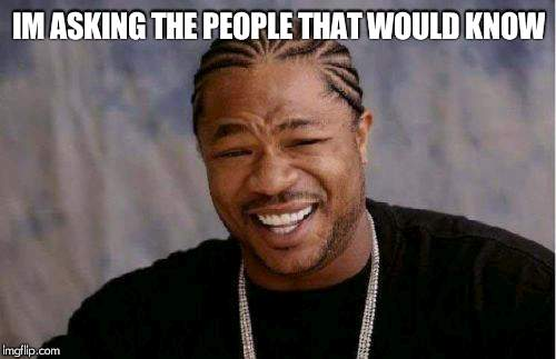 Yo Dawg Heard You Meme | IM ASKING THE PEOPLE THAT WOULD KNOW | image tagged in memes,yo dawg heard you | made w/ Imgflip meme maker