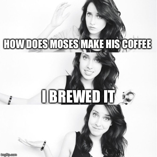 HOW DOES MOSES MAKE HIS COFFEE I BREWED IT | image tagged in bad pun laina 2 | made w/ Imgflip meme maker