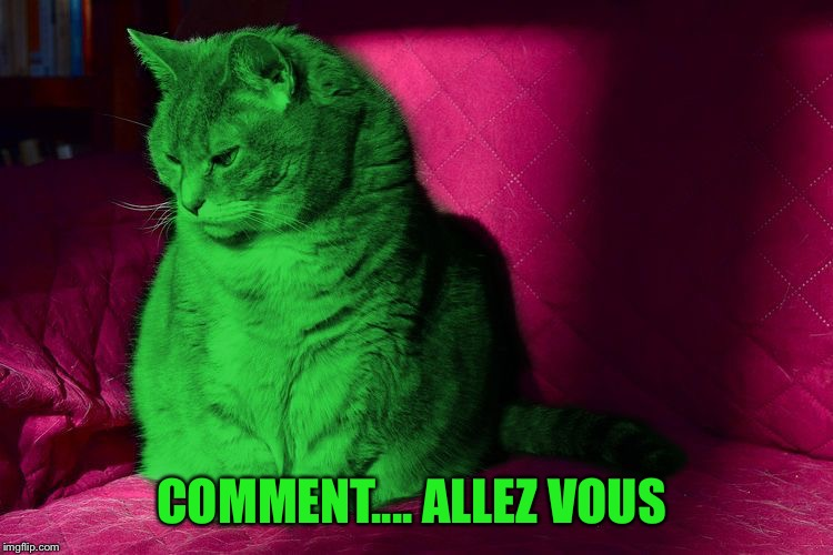 Cantankerous RayCat | COMMENT.... ALLEZ VOUS | image tagged in cantankerous raycat | made w/ Imgflip meme maker