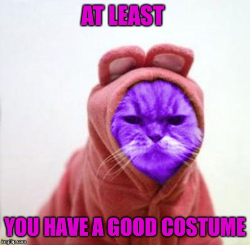 Sullen RayCat | AT LEAST YOU HAVE A GOOD COSTUME | image tagged in sullen raycat | made w/ Imgflip meme maker