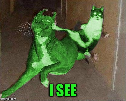 RayCat kicking RayDog | I SEE | image tagged in raycat kicking raydog | made w/ Imgflip meme maker