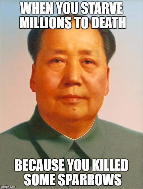 Made In China | WHEN YOU STARVE MILLIONS TO DEATH BECAUSE YOU KILLED SOME SPARROWS | image tagged in mao zedong,china | made w/ Imgflip meme maker
