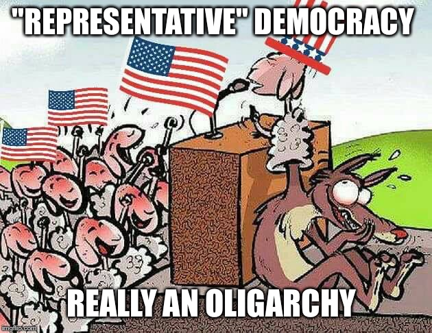 "Really An... | ""REPRESENTATIVE"" DEMOCRACY REALLY AN OLIGARCHY 