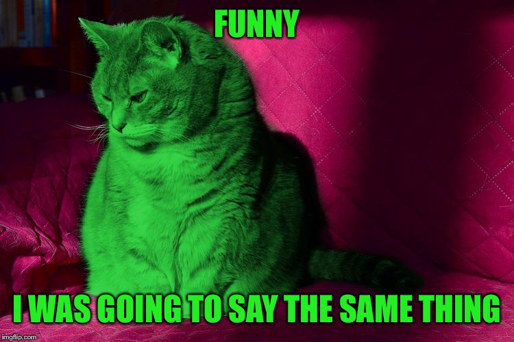 Cantankerous RayCat | FUNNY I WAS GOING TO SAY THE SAME THING | image tagged in cantankerous raycat | made w/ Imgflip meme maker