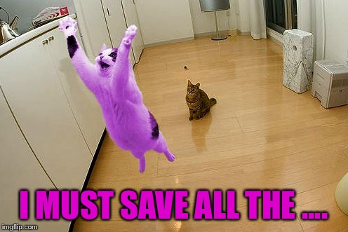 RayCat save the world | I MUST SAVE ALL THE .... | image tagged in raycat save the world | made w/ Imgflip meme maker