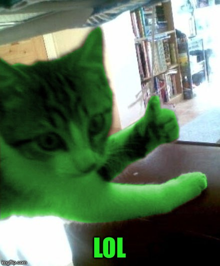thumbs up RayCat | LOL | image tagged in thumbs up raycat | made w/ Imgflip meme maker